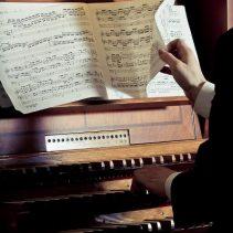 """""""Az orgona hangszínei"""""""
